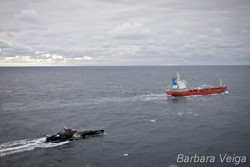 news_110112_1_1_Sea_shepherd_cuts_off_supplies_to_whaling_fleet_9964.jpg